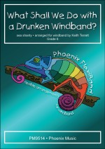 WHAT SHALL WE DO WITH THE DRUNKEN WINDBAND? (FlexiBand)