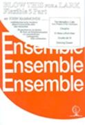 BLOW THIS FOR A LARK (Flexible 5 part ensemble)